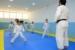 judo guara (5)