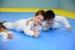 judo guara (6)
