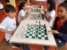 xadrez2018 guara (14)