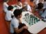 xadrez2018 guara (22)