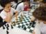 xadrez2018 guara (3)